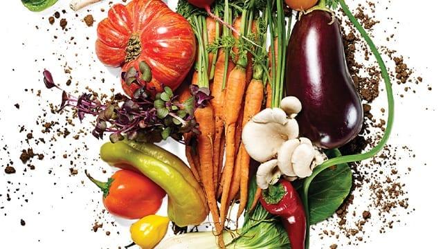 Vegetables_Mud