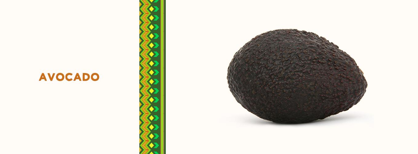 Mexican Ingredients: avocado